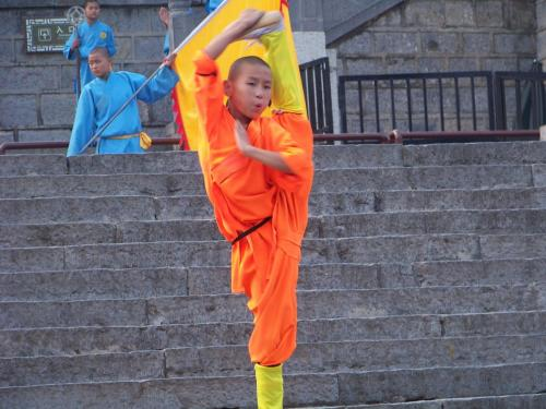 Practicante en Shaolin